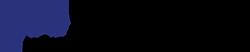 Neo Solutions OG Logo